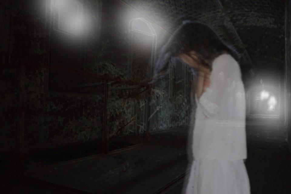 Image of Abandoned lunatic asylum (HauntedHouse)