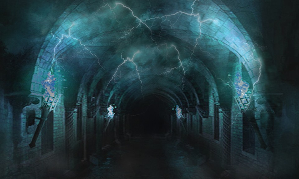 Image of Disjunction chamber
